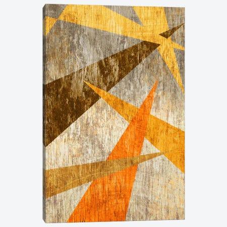 Woodgrain Prism Canvas Print #ICA338} by Unknown Artist Canvas Art