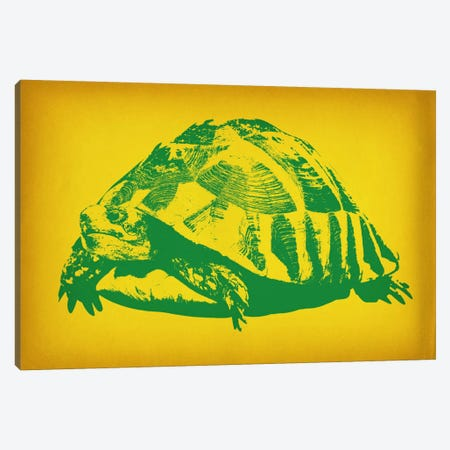Green Tortoise Pop Art Canvas Print #ICA358} by iCanvas Canvas Artwork