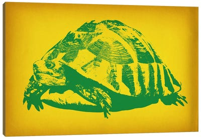Green Tortoise Pop Art Canvas Art Print