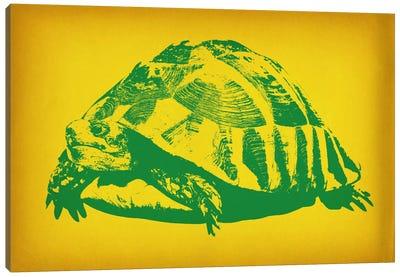 Green Tortoise Pop Art Canvas Art Print
