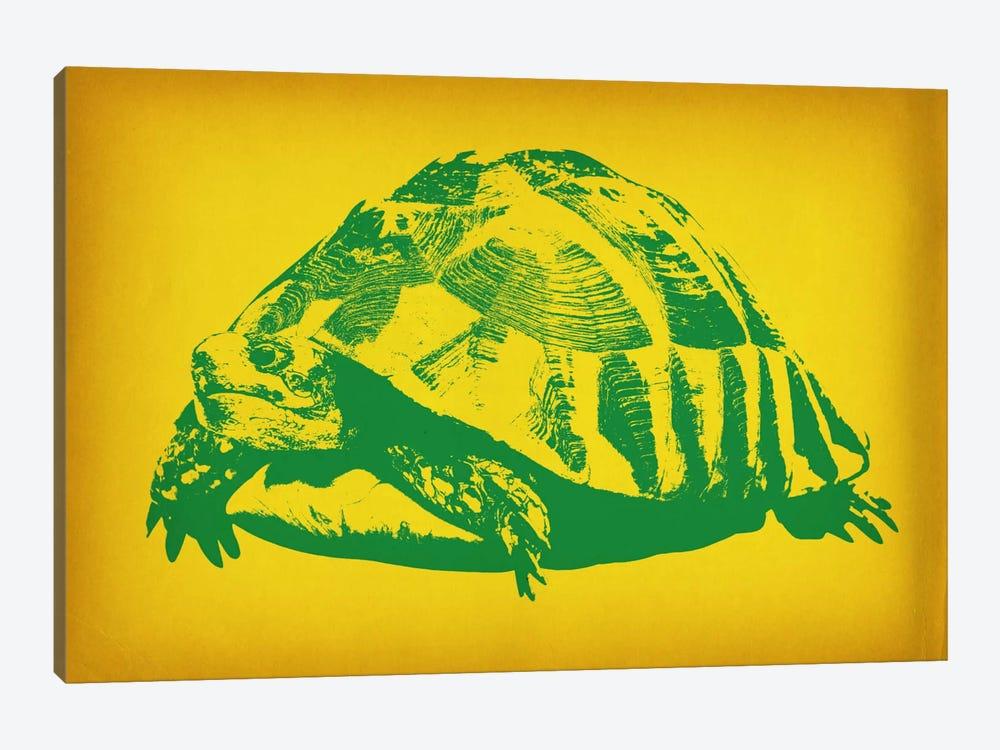 Green Tortoise Pop Art by Unknown Artist 1-piece Canvas Art Print