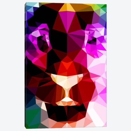 Lion Polygon Art Canvas Print #ICA366} by Unknown Artist Canvas Wall Art
