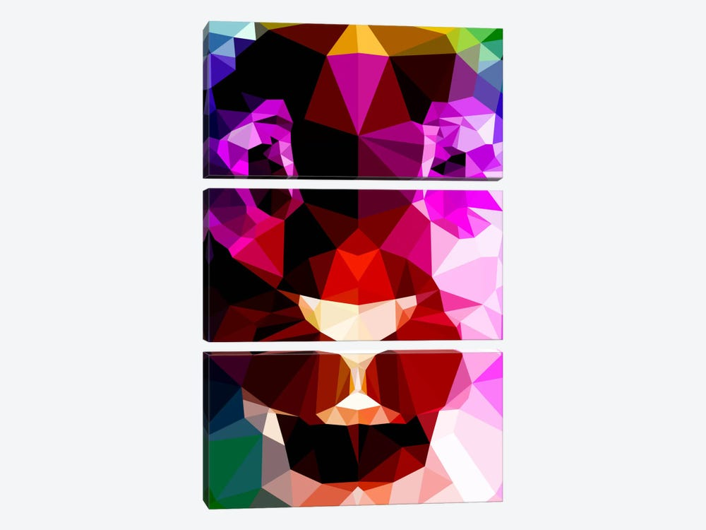 Lion Polygon Art by Unknown Artist 3-piece Canvas Art