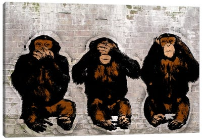 Monkey See, Monkey Do Canvas Art Print