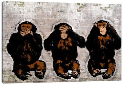 Monkey See, Monkey Do Canvas Art Print
