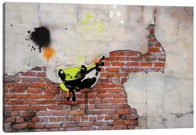 Peeping Frog Canvas Art Print