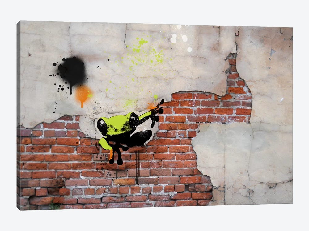 Peeping Frog by 5by5collective 1-piece Canvas Print