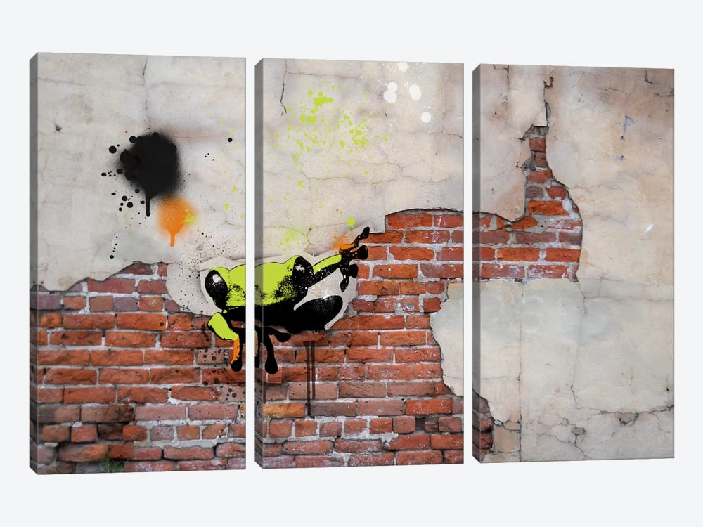 Peeping Frog by 5by5collective 3-piece Art Print