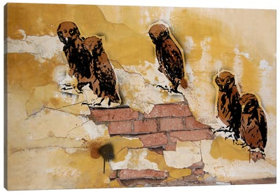 Hoot Are You Canvas Art Print