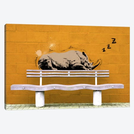 Sleepy Rhino Canvas Print #ICA492} by 5by5collective Canvas Print