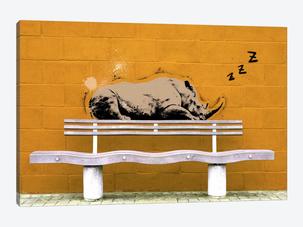 Sleepy Rhino by 5by5collective 1-piece Canvas Wall Art