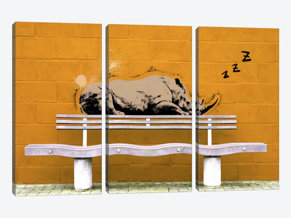 Sleepy Rhino by 5by5collective 3-piece Canvas Artwork