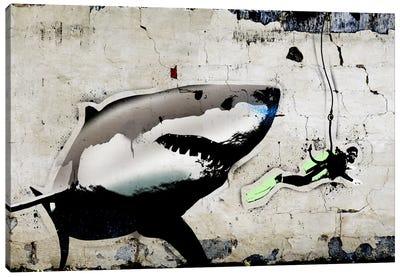 Shark Bait Canvas Print #ICA496