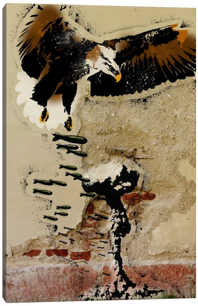 Freedom Fighter Canvas Print #ICA498