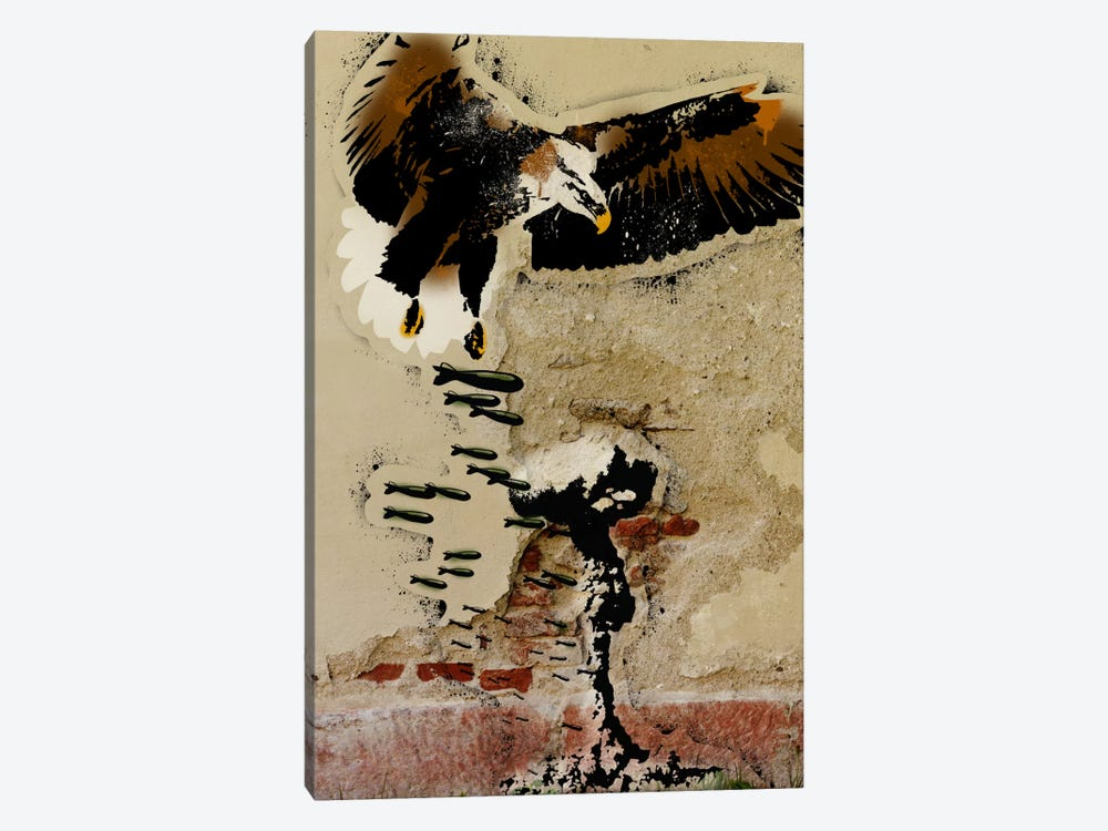 Freedom Fighter by 5by5collective 1-piece Canvas Wall Art
