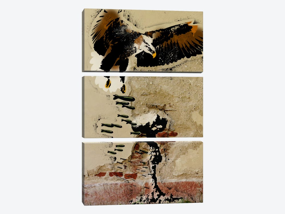 Freedom Fighter by 5by5collective 3-piece Canvas Artwork