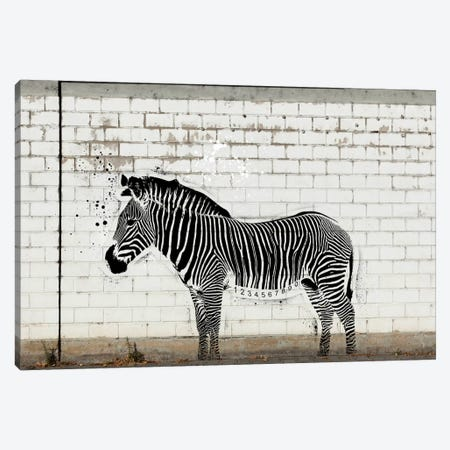 Barcode Zebra Canvas Print #ICA506} by 5by5collective Canvas Art