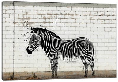 Barcode Zebra Canvas Art Print