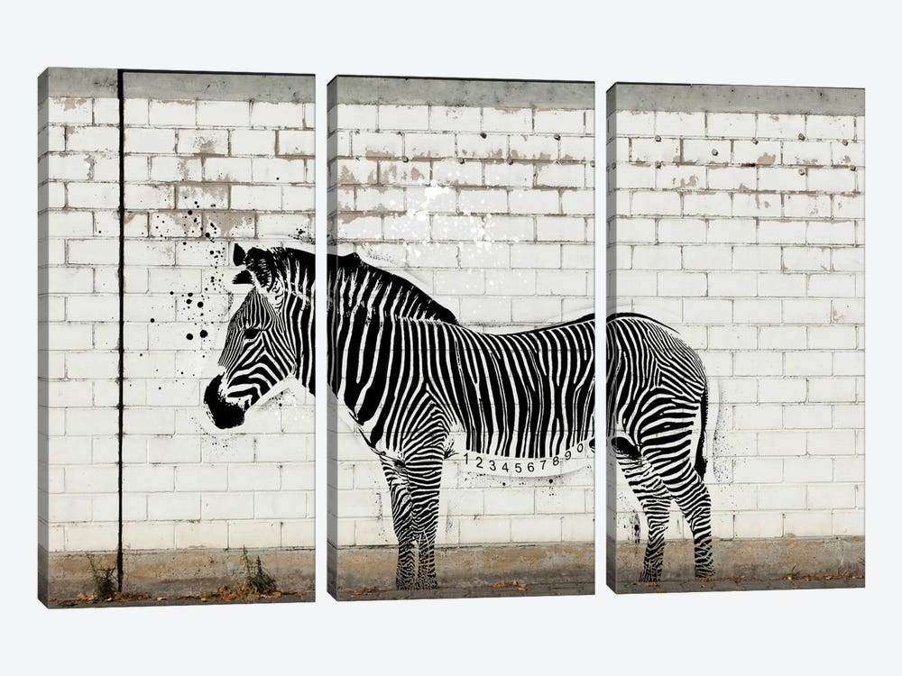 Barcode Zebra by 5by5collective 3-piece Canvas Wall Art