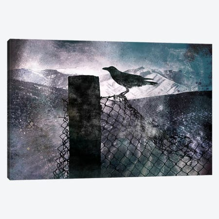 Night Raven Canvas Print #ICA538} by 5by5collective Canvas Wall Art