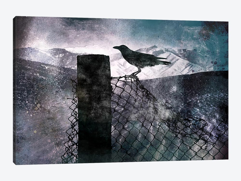 Night Raven by 5by5collective 1-piece Canvas Print