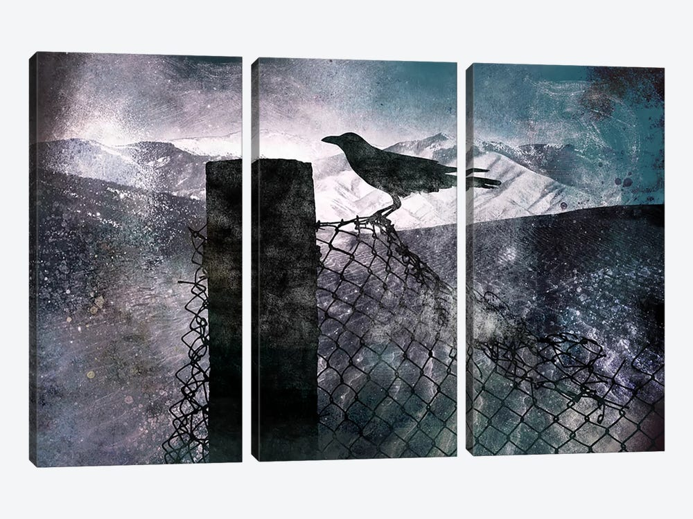 Night Raven by 5by5collective 3-piece Canvas Print