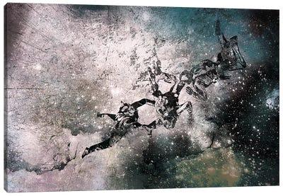 Out of Reach Canvas Art Print