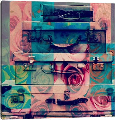 Vintage Floral Luggage Canvas Art Print