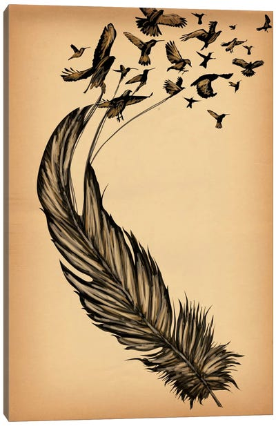 All From a Feather Canvas Art Print