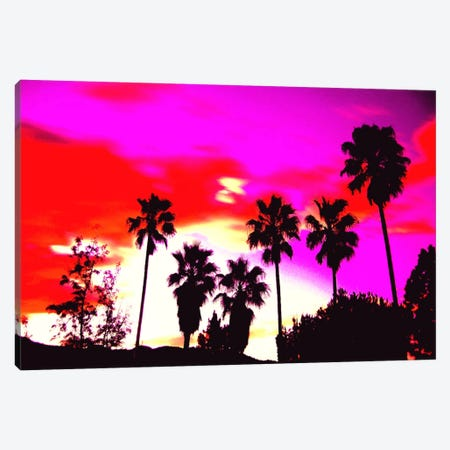 Burning Sky of Palms Canvas Print #ICA822} by 5by5collective Canvas Art