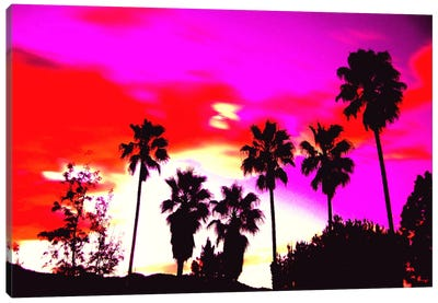 Burning Sky of Palms Canvas Art Print