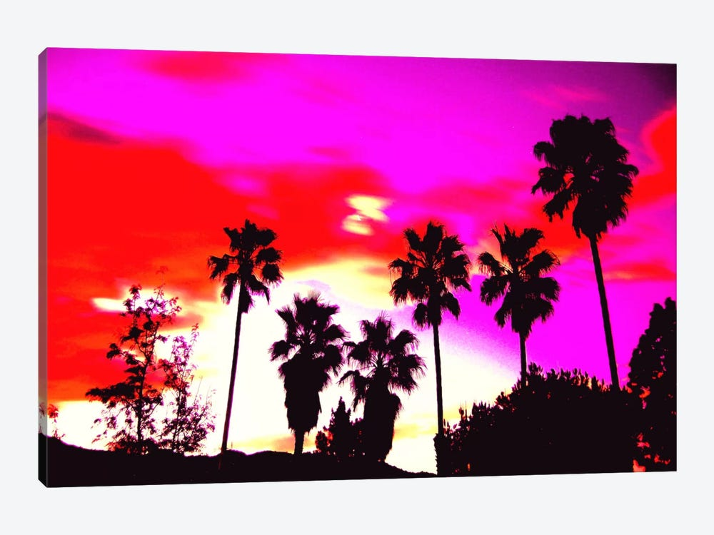 Burning Sky of Palms by 5by5collective 1-piece Canvas Print