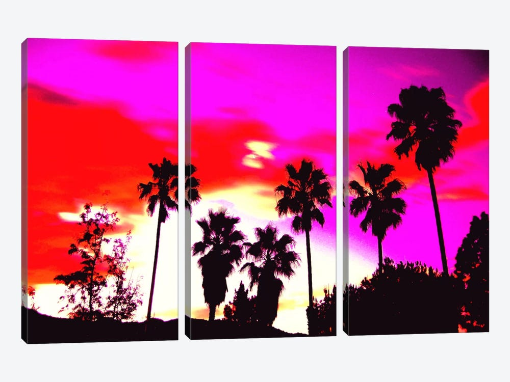 Burning Sky of Palms by 5by5collective 3-piece Art Print