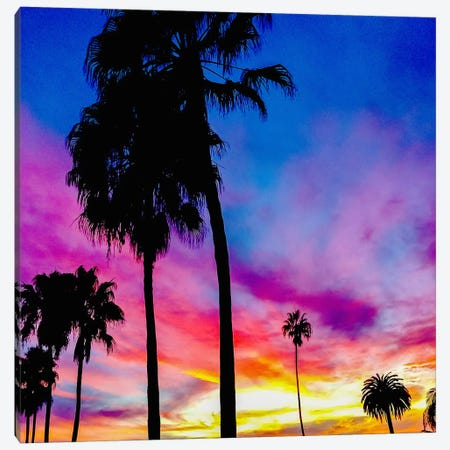 Painted Skies Above the Palms Canvas Print #ICA823} by 5by5collective Canvas Wall Art