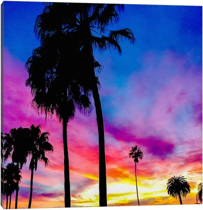 Painted Skies Above the Palms Canvas Art Print