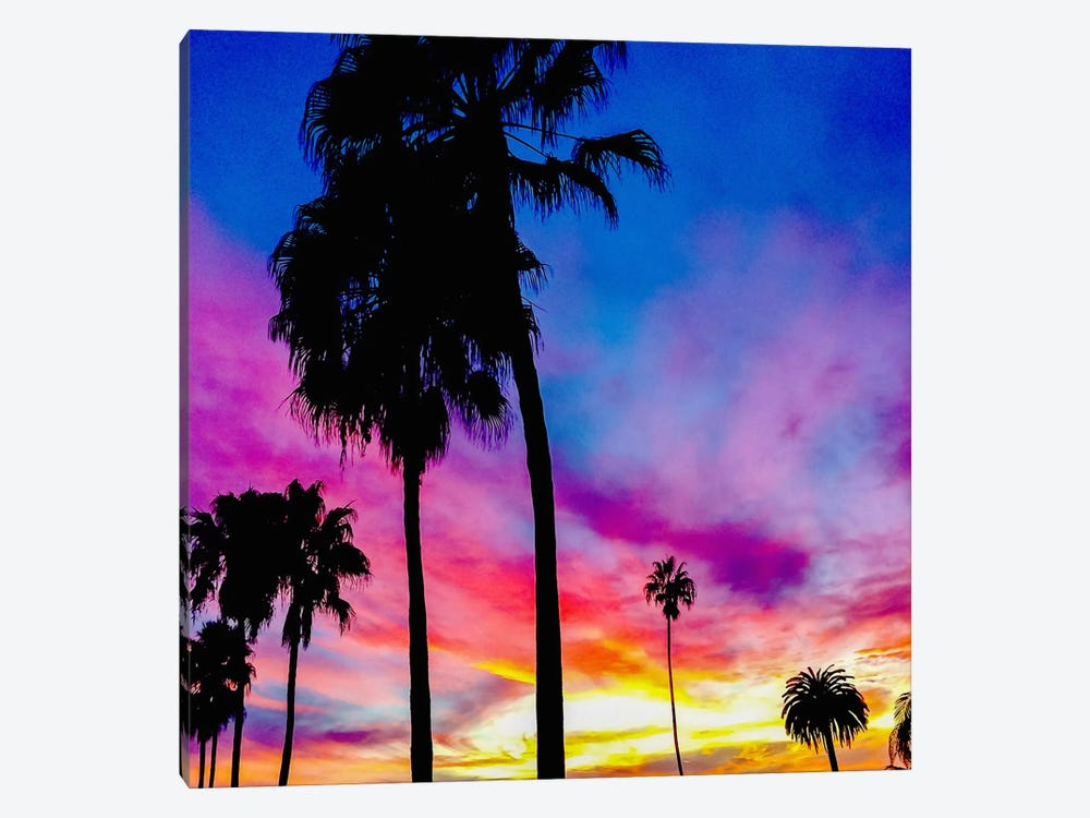 Painted Skies Above the Palms by 5by5collective 1-piece Canvas Artwork