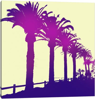 Midnight Purple Palms Canvas Art Print