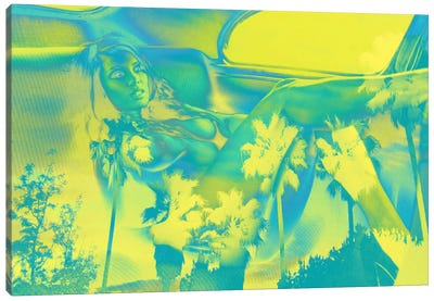 Reclining in Palms Canvas Print #ICA833