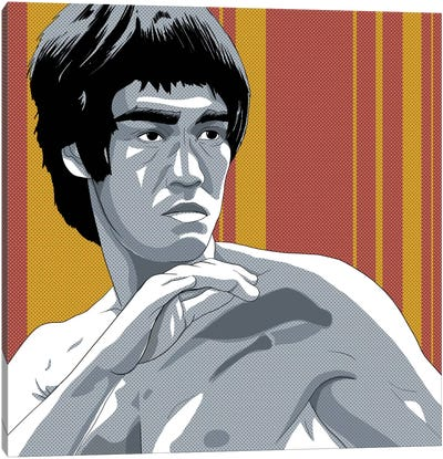 Kung Fu Fighter Canvas Art Print