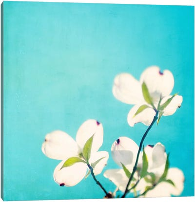 A Life So Colorful Canvas Print #ICS112