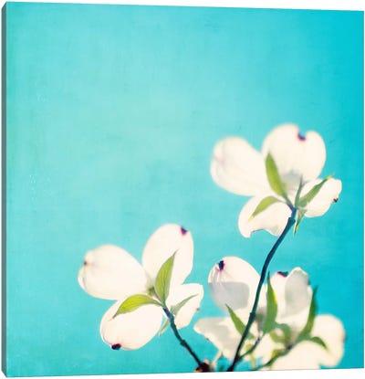A Life So Colorful Canvas Art Print