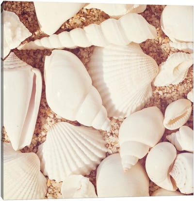 Beachcomber Canvas Art Print