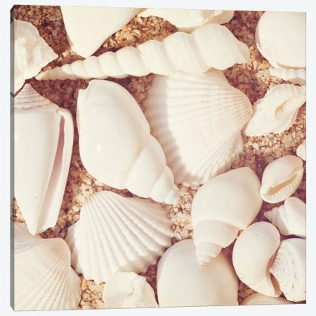 Beachcomber Canvas Print #ICS113} by Carolyn Cochrane Canvas Wall Art