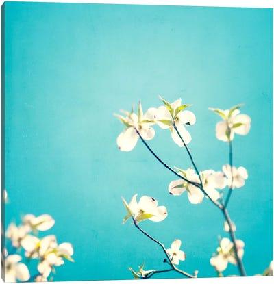 Delicate Canvas Art Print