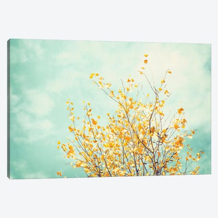 Gentle Whisper Canvas Print #ICS120} by Carolyn Cochrane Canvas Print