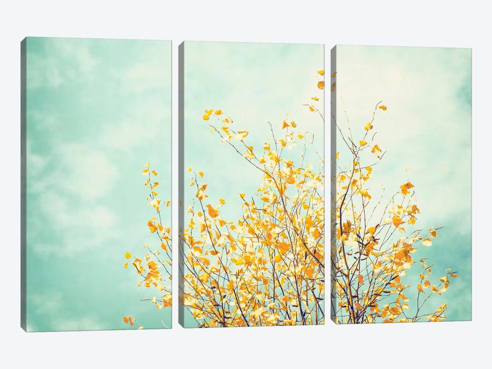 Gentle Whisper by Carolyn Cochrane 3-piece Canvas Print