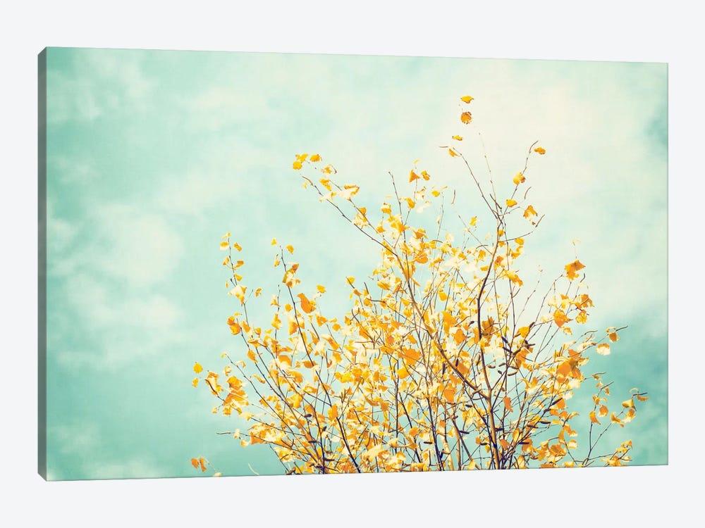 Gentle Whisper by Carolyn Cochrane 1-piece Canvas Print