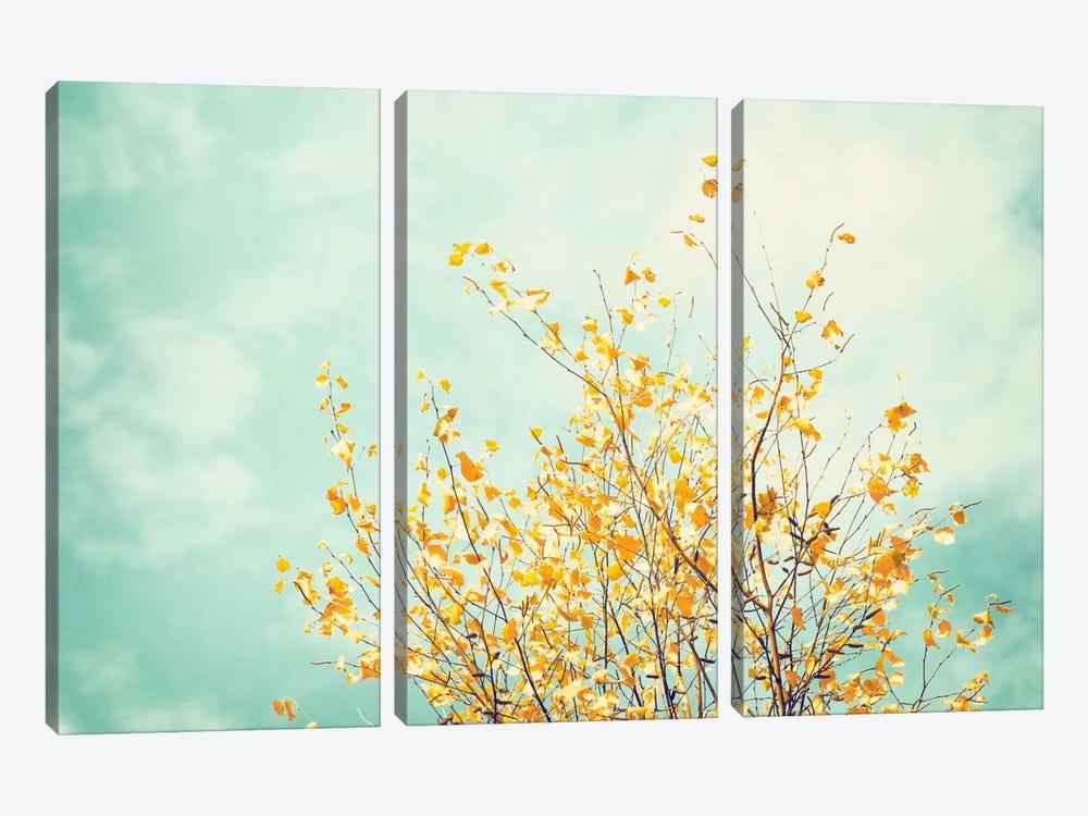 Gentle Whisper by Carolyn Cochrane 3-piece Canvas Print