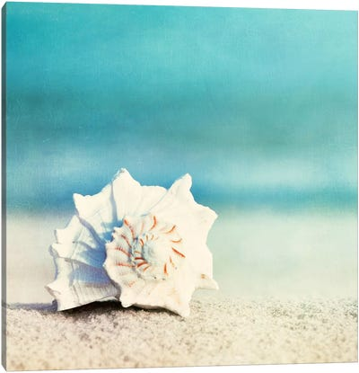 Paradise Canvas Print #ICS129