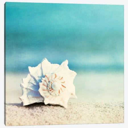 Paradise Canvas Print #ICS129} by Carolyn Cochrane Canvas Print